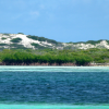 A student studying abroad with SFS: Turks & Caicos - Marine Resource Management Studies