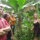 Study Abroad Reviews for Sol Education Abroad: Heredia - Latin University of Costa Rica