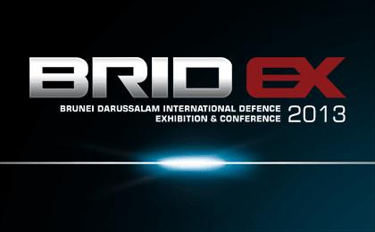 BridEx 2013