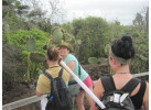 Ecuador's Galapagos Islands (Ecological wonderlands of the Galapagos Islands) - Tour Length: 8 Days