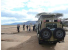 Serengeti: The Ultimate Safari Experience