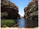 Central Australia Outback Odyssey Through the Northern Territory
