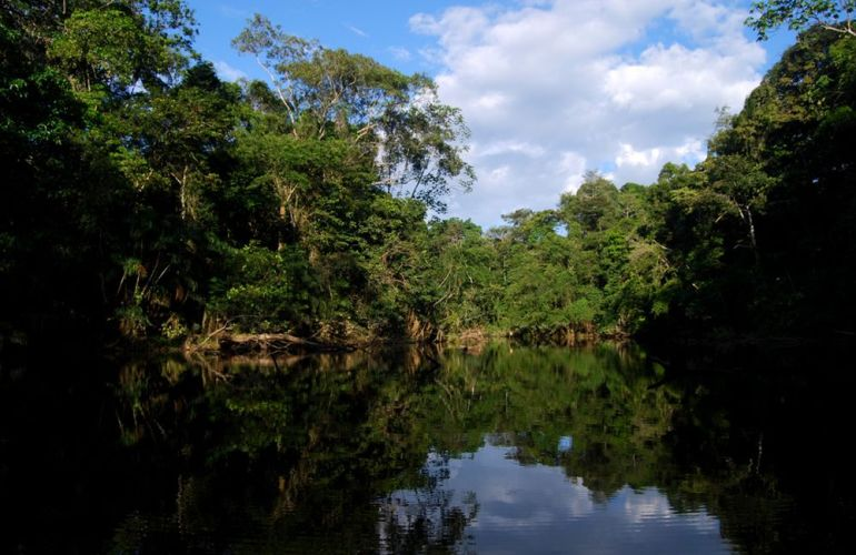 Spend 5 Days Exploring the Amazon of Ecuador