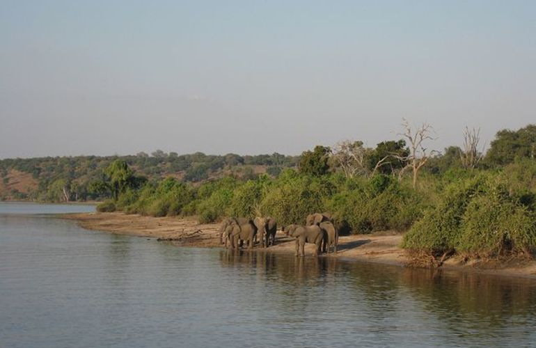 Explore the Landscapes and Wildlife of Botswana Elephant Trail