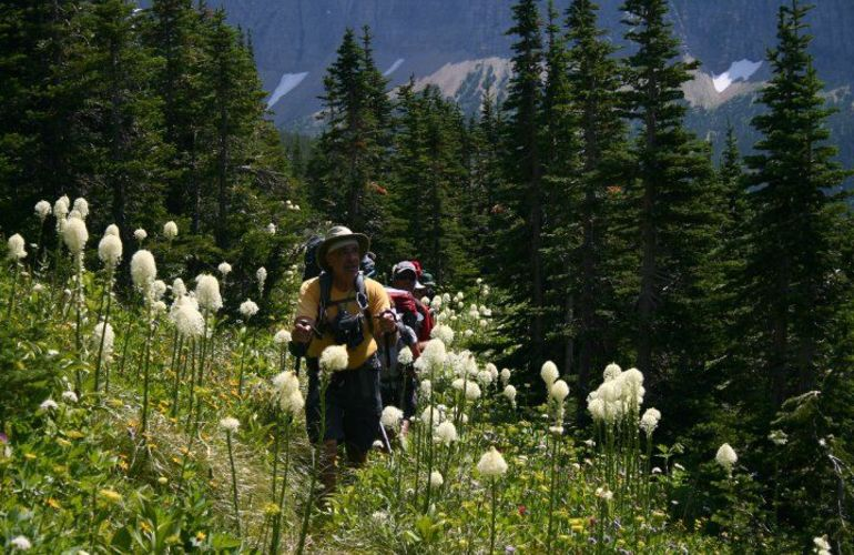 5 Days Boomer Backpack in Glacier National Park, Montana - Special Trip for Seniors