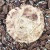 After Dark Cookies presents the Abuelita Cayena cookie