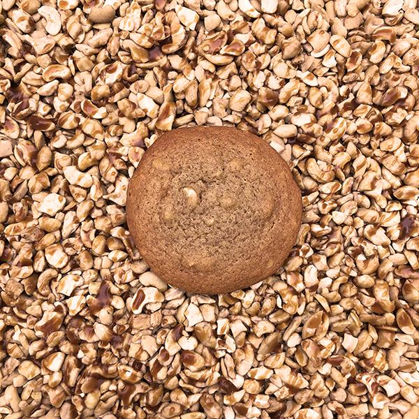 After Dark Cookies presents the Caramel Cashew cookie