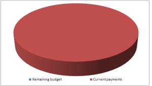 Presupuesto - Ejecución