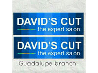 David's cut - the expert salon guadalupe