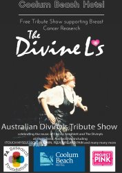 The Divinels Tribute Show