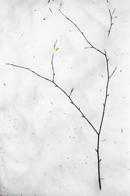Gestural minimalism - 033 NE