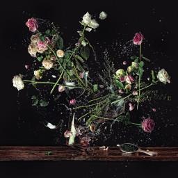 Decadence Flowers #01