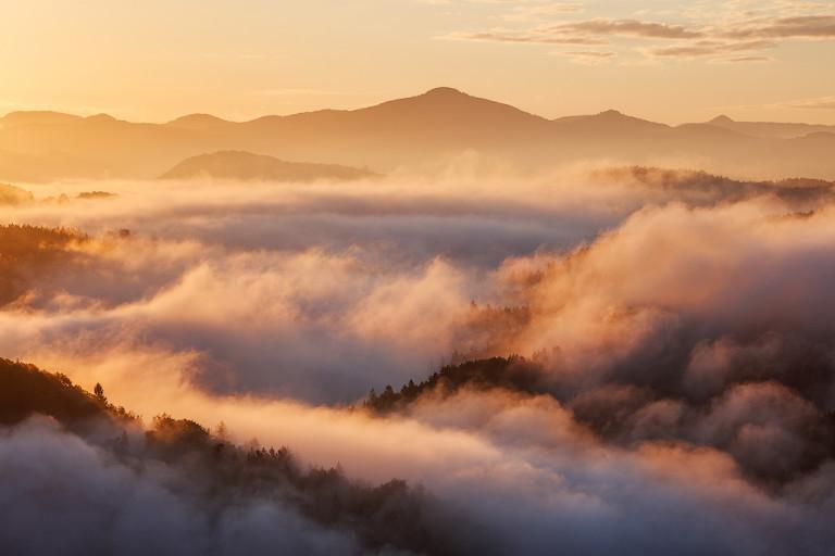Stormy Fog