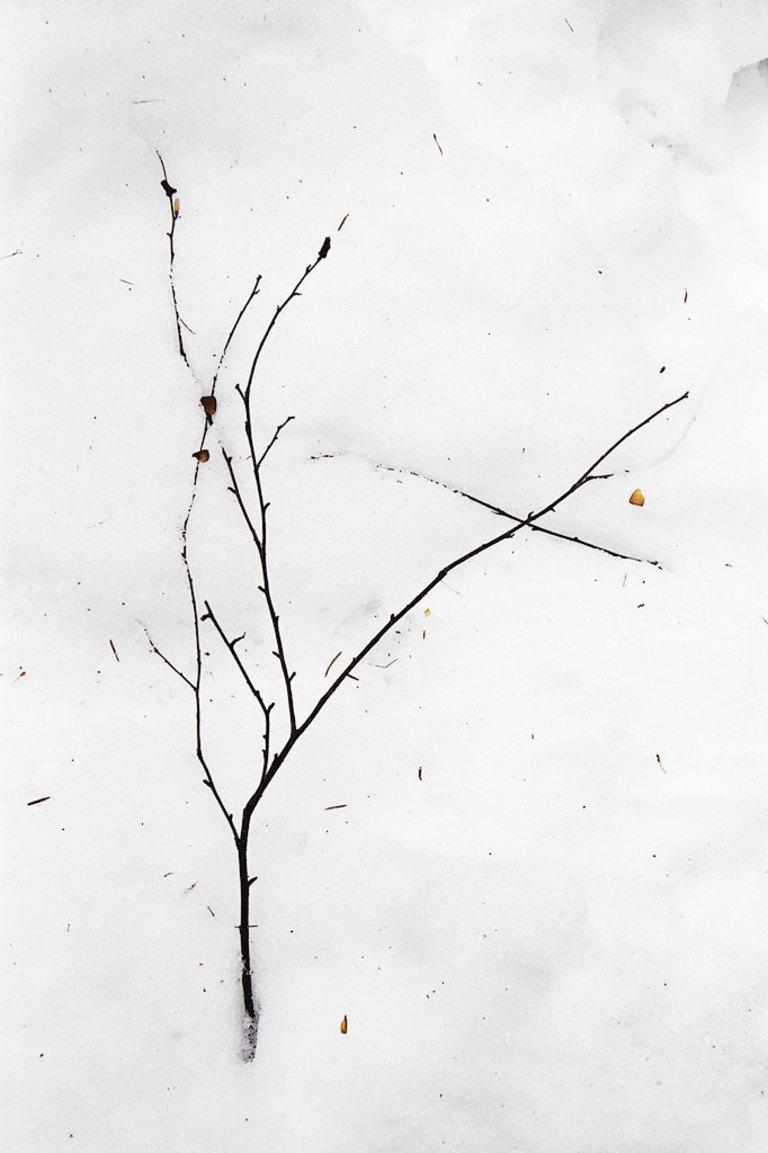 Gestural minimalism 035 st for Minimal art artisti