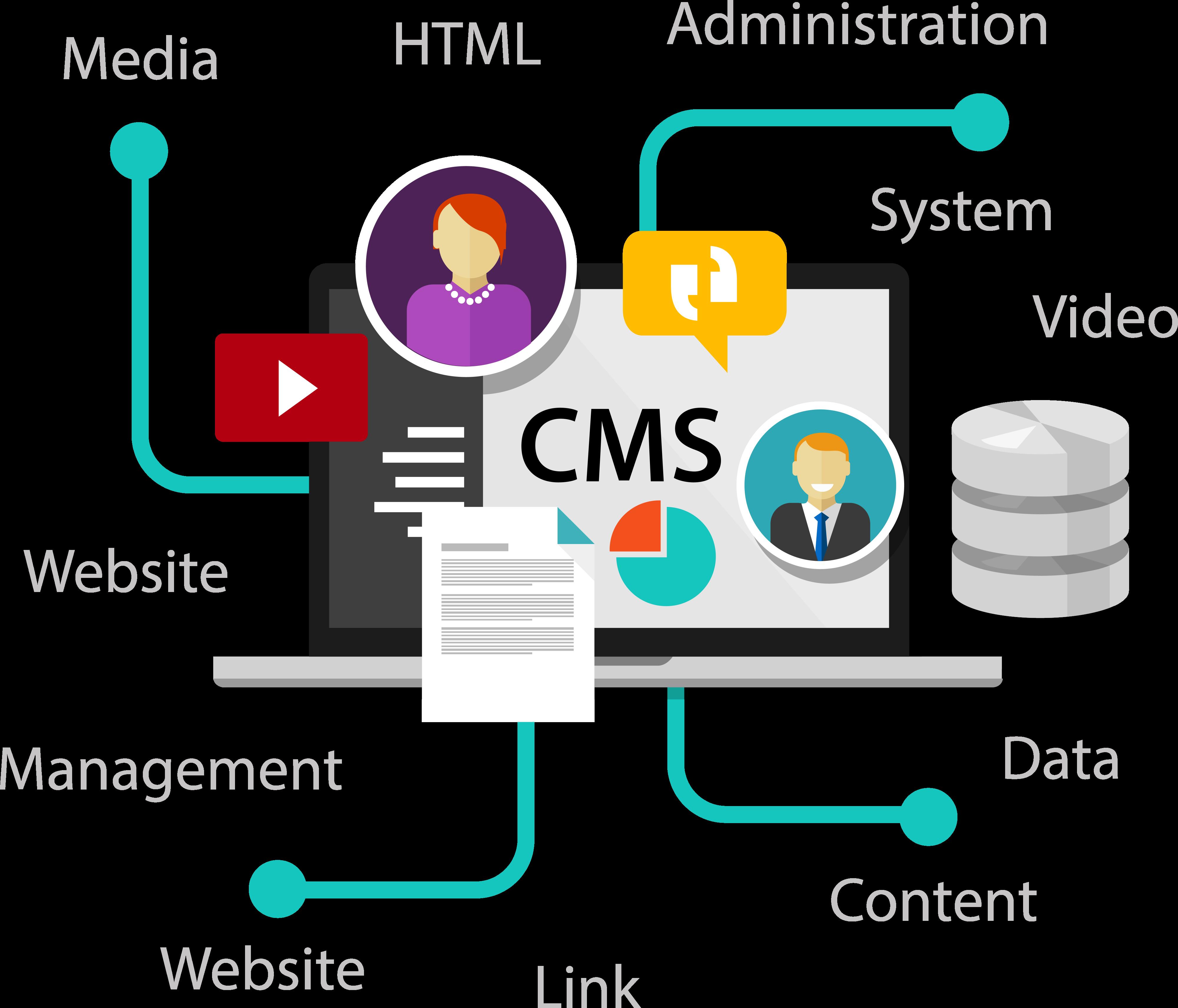 DMS System