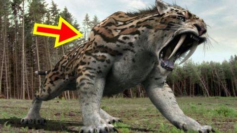 Bersyukurlah 10 Hewan Mengerikan Ini Sudah Punah Dari Muka Bumi