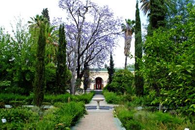 Muzeum Dar Batha - https://www.flickr.com/photos/53199286@N00/8958254162/in/photolist-eDBoRY-45L7Hj-486GYk-48aJRN-486Hue-486HUx-48aJsq-486HCD-48aKwN-486HKp-486H88-486Hpz-486H2k-48aK87-486HA8-48aJxo-9XChFN-4agFmm-7zw9L7-4agFiS-4aao1i-imXAn-imXAi-imXAr-imXAg-imXAj-imXAp-6KxTar-qsSn9F-kt95tJ-kt6Q1v-kt94fS-kt7uun-kt6Ptt-kt7tuM-kt94HA-kt6N2v-kt7tW8-kt6R4n-kt94w3-kt95iy-kt95XE-kt6QCH-kt6PB4-kt94Wb-kt6Qcc-kt94c5-kt7v6c-kt6MC4-kt96FJ