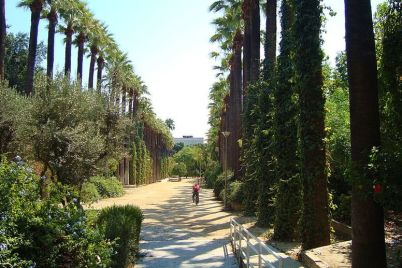 Obecní zahrady - http://commons.wikimedia.org/wiki/File:Nicosia_historical_Municipal_gardens_in_Republic_of_Cyprus.jpg