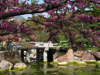 Japonské zahrady - http://commons.wikimedia.org/wiki/File:Japanese-garden-Monaco.jpg