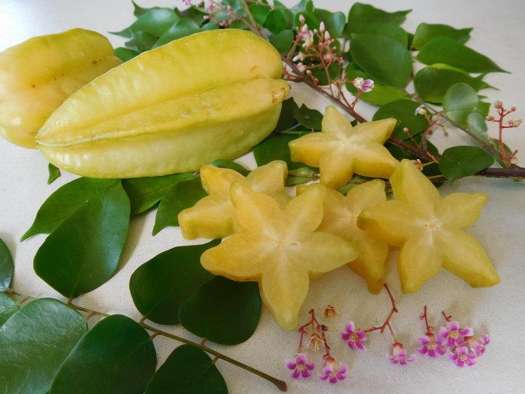 Carambola Starfruit má velmi specifickou chuť