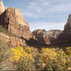 Shuttle Trip from Las Vegas to Zion National Park