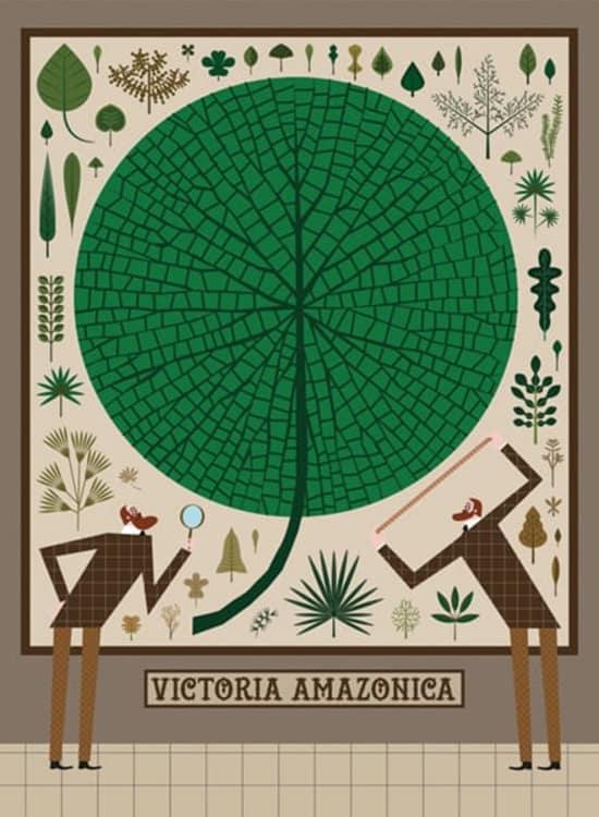Illustration by Verónica Grech