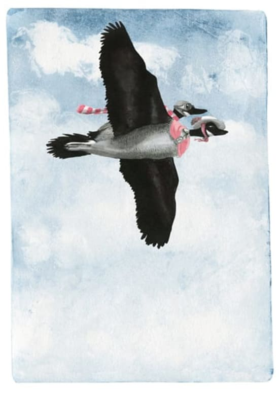Illustration by Saskia Hampton