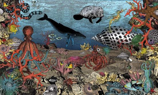Illustration by Kristjana Williams