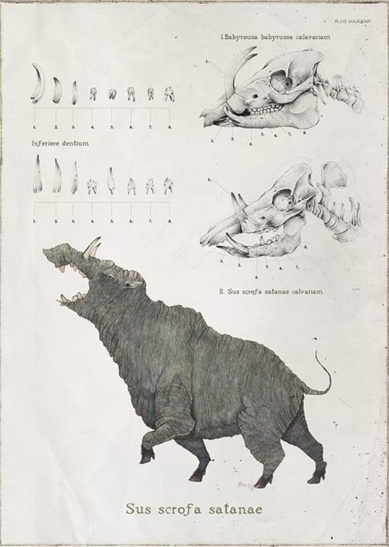 Illustration by Ricardo Nunez Suarez