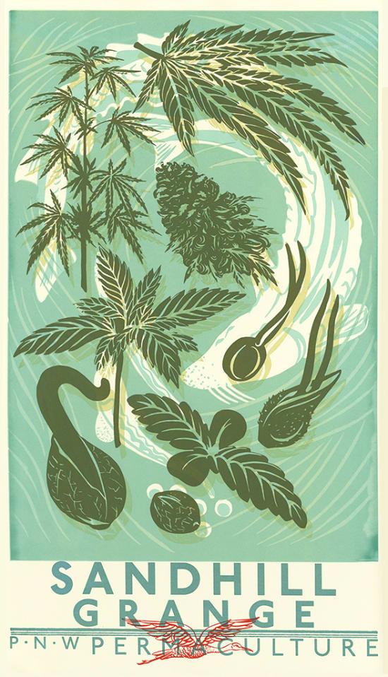 Illustration by Aya Morton