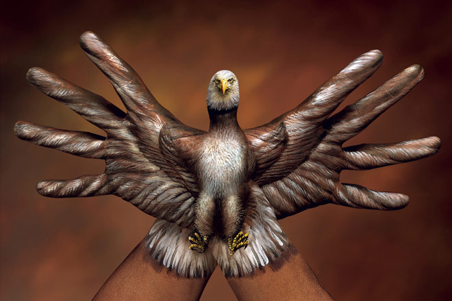 Bald Eagle 2 hands by Guido Daniele - grandes pássaros voam alto