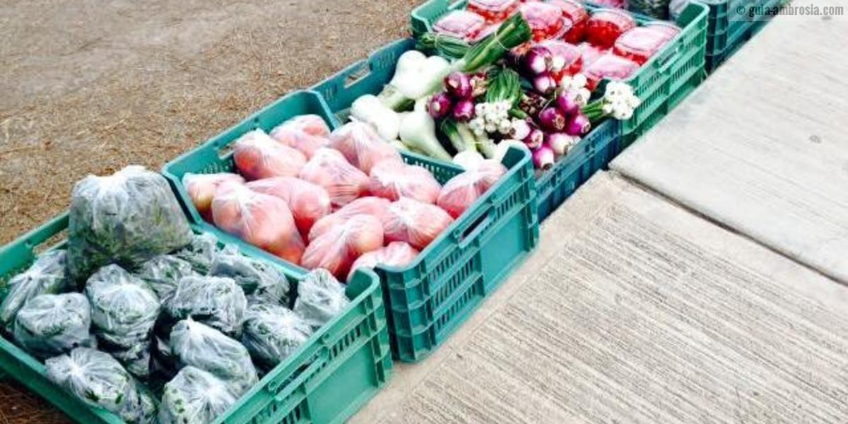Las verduras del Valle.