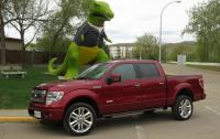 2013 Ford F-150 Limited - side 3/4 beauty shot.JPG