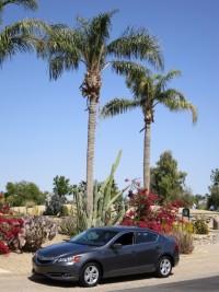 2013 Acura ILX - Front.jpg