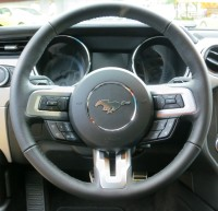 2015 Ford Mustang.jpg