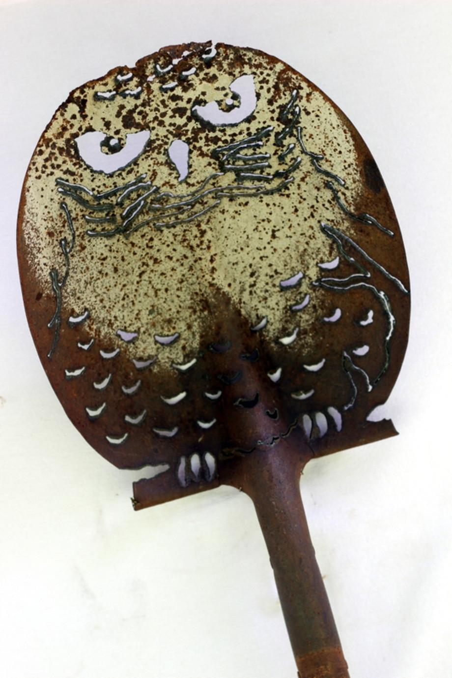 Hedwig shovel