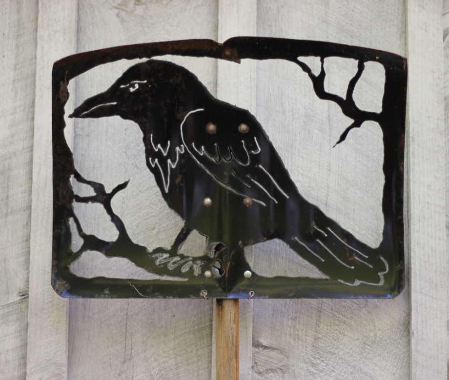 Raven shovel