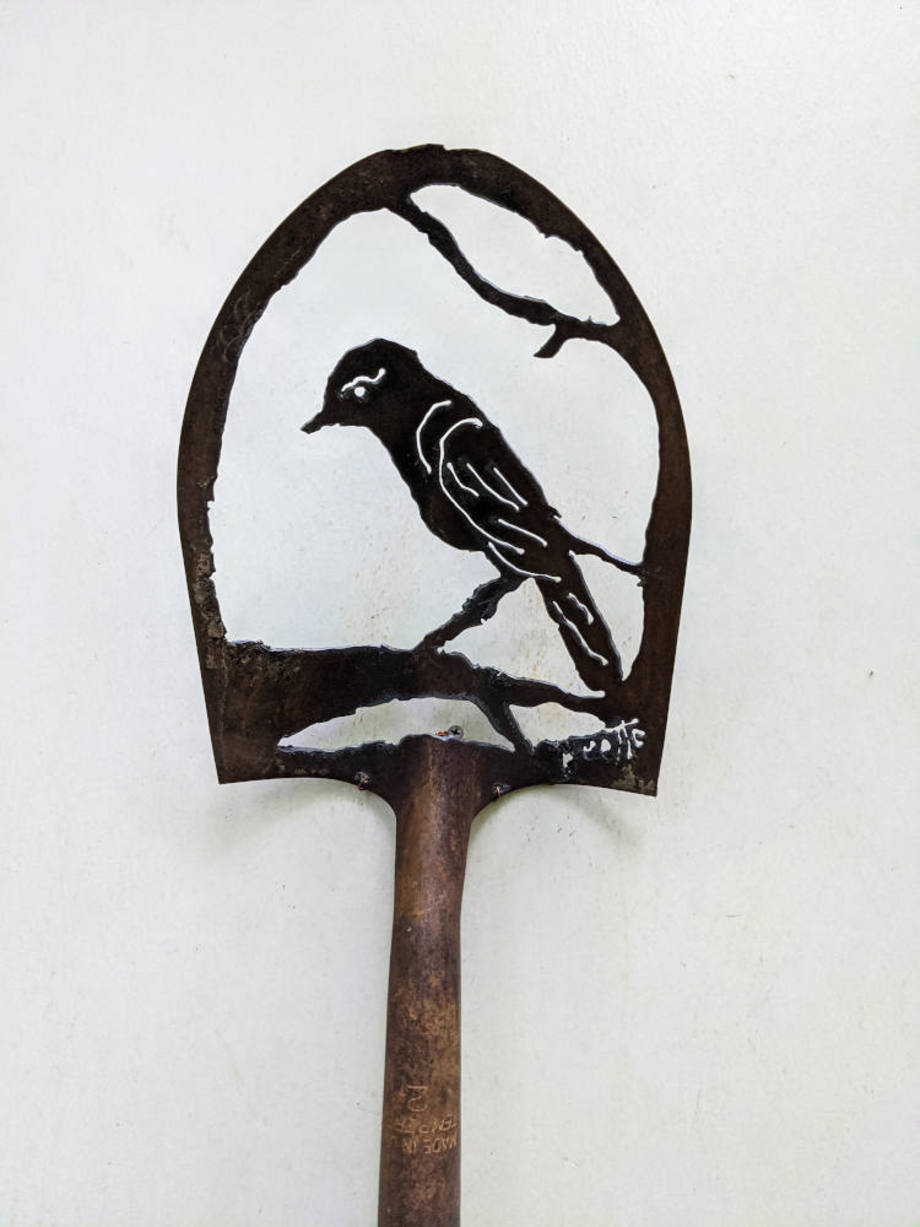Bird shovel