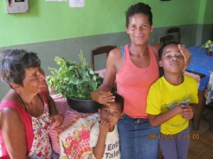 Herbs for Restaurant Docinho, Taboquinhas