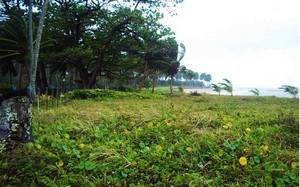 Building plot for sale, Itaparica, Bahia