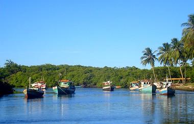 Bahia Barcas
