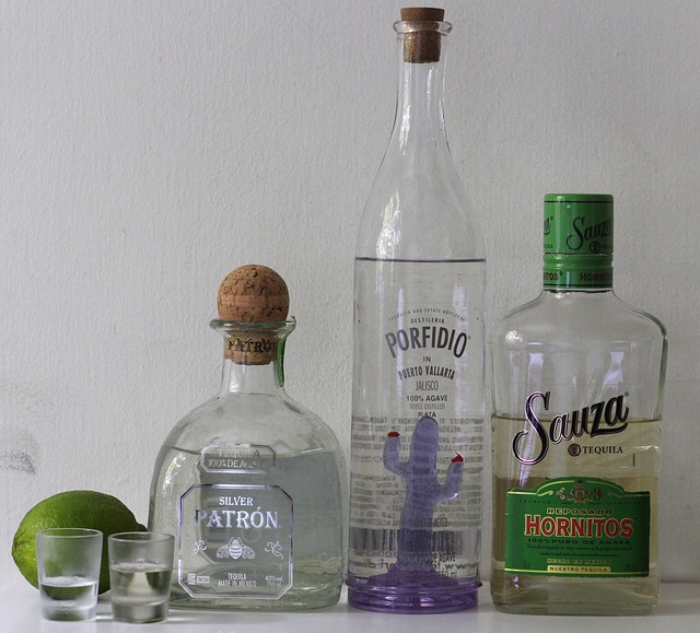 tequila-893504_640