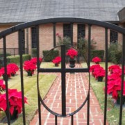 Rose Garden at Bethel