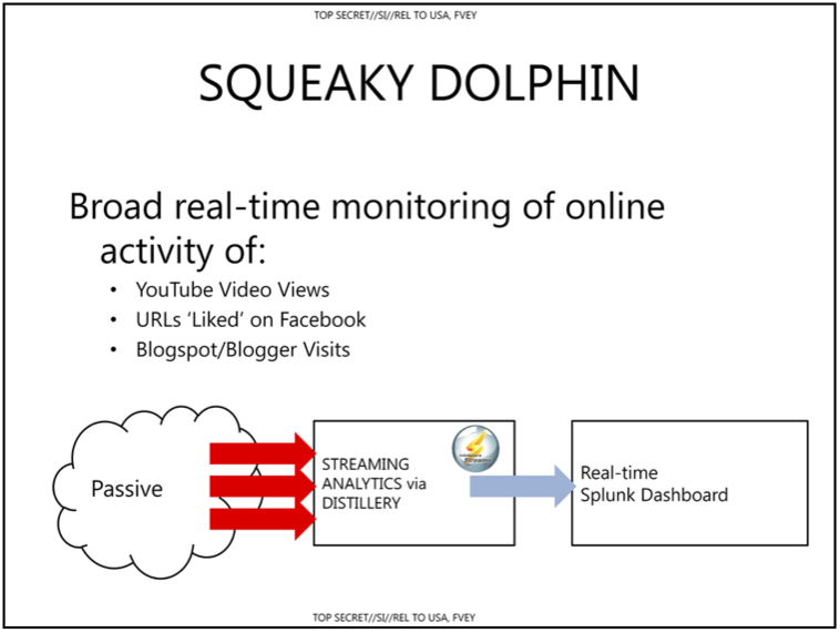 SqueakyDolphin