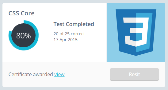 My SitTheTest CSS results - 80%