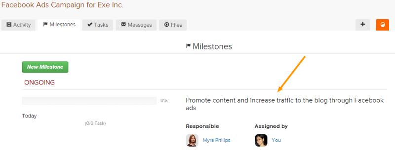 milestone-project-vision