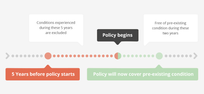 pre existing health conditions infographic 2