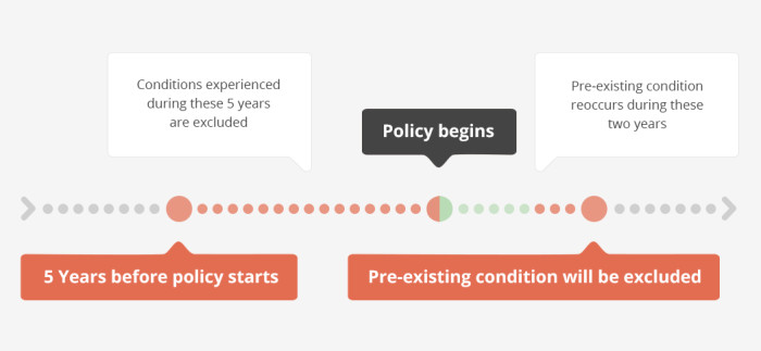 pre existing health conditions infographic 3