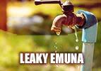 Leaky Emuna