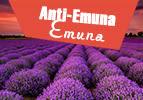 Anti-Emuna Emuna
